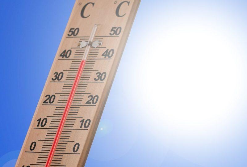 フランスでも記録的猛暑