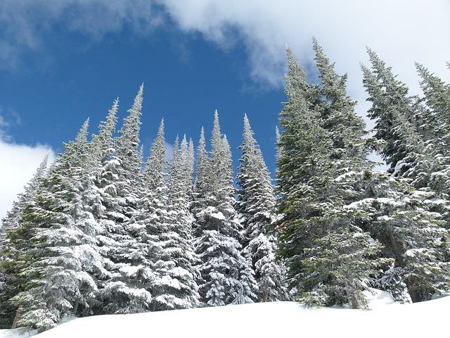 フランスのスキー場ランキング。豪華な高級スキーリゾートで過ごす冬