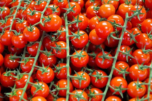 甘味が他のものより倍増しているプチトマトはこれ