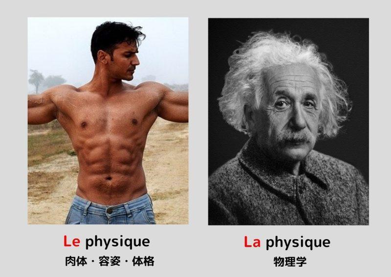 体格と物理学「physique」